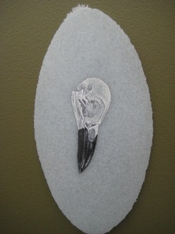 Enamel bird skull on pate de vere feather